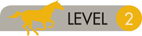 aLevel-2